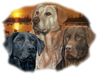 Sunset Labrador Retrievers Door Mat