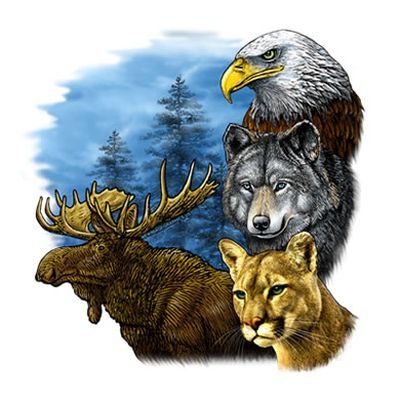 Moose Eagle Wolf Bobcat Door Mat