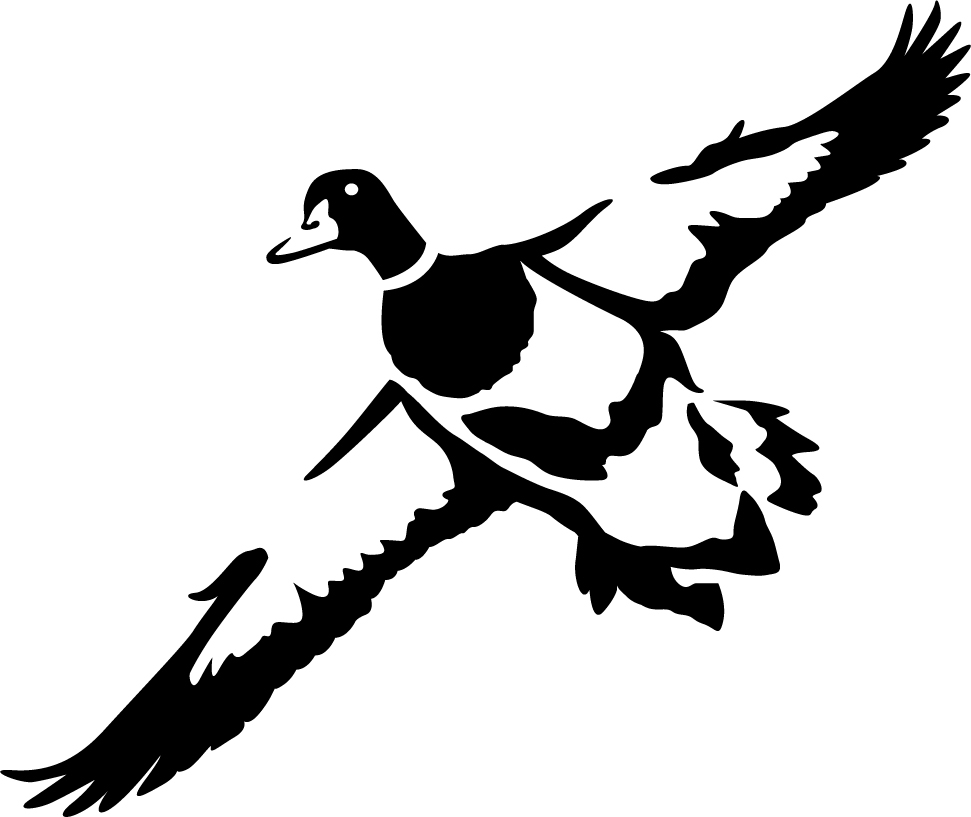 First Look Duck Wall Decal