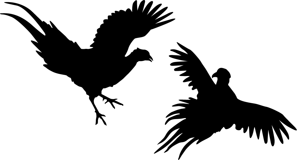 Fighting Pheasants Wall Decal