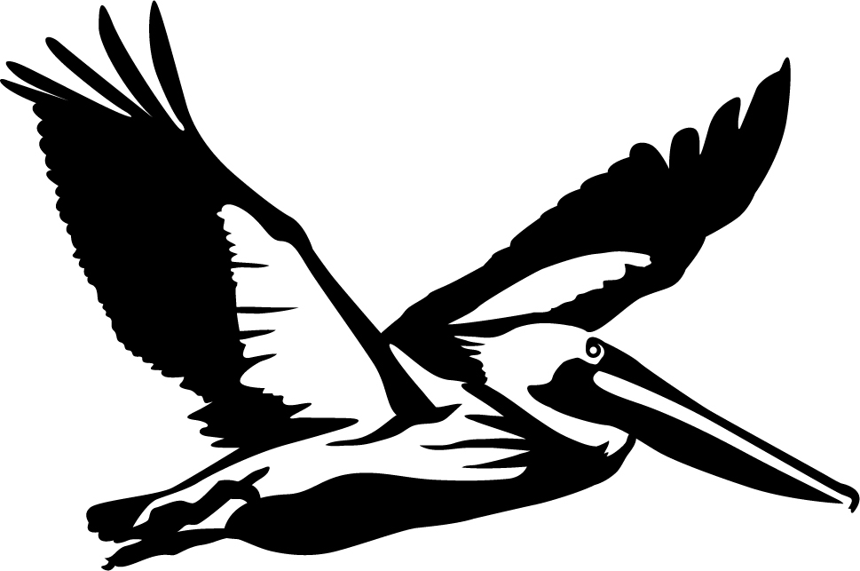 Flying Pelican Wall Decal