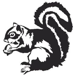 Squirrel With Acorn Decal