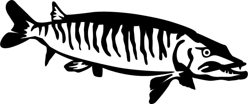 muskie wall decal