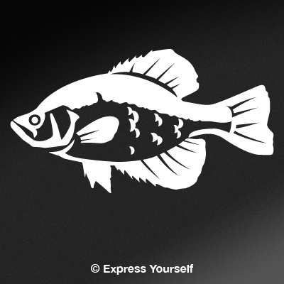 Car Decal Ideas >> Crappie 2 Decal