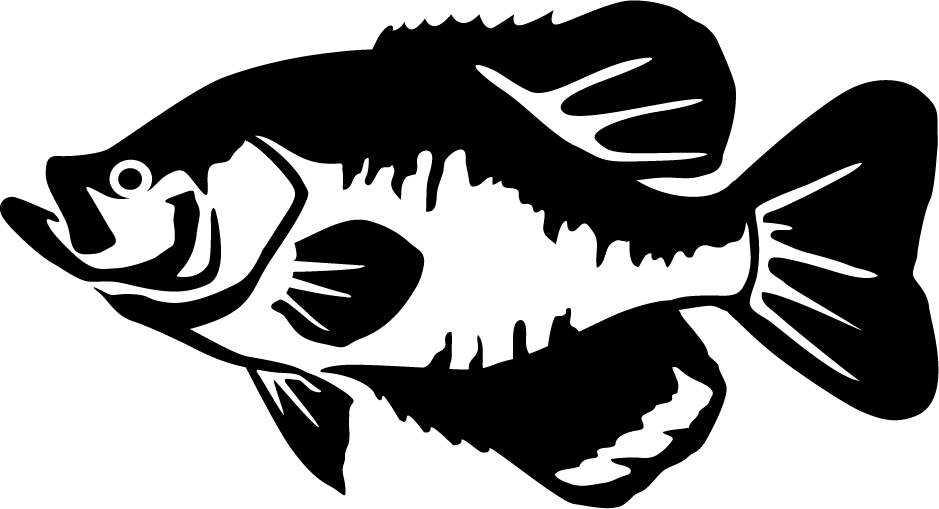 Black crappie wall decal for Free fishing decals