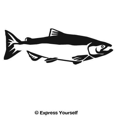 Chinook Salmon Decal