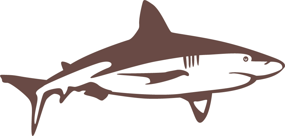 bull shark cruising wall decal. Black Bedroom Furniture Sets. Home Design Ideas