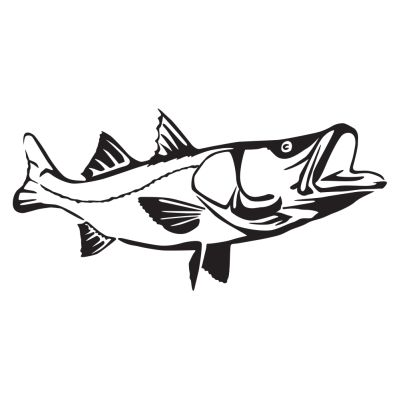 Detailed Snook Decal