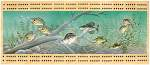 Panfish Scene Cribbage Board