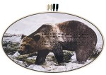 Grizzly Bear Oval Cribbage Board