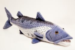 Barracuda 17 inch stuffed animal for Barracuda fish for sale