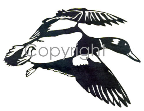 Flying mallard decal for Duck hunting mural