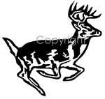 Runnin' Buck Decal