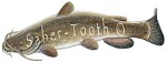 Flathead Catfish Decal