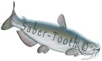 Blue Catfish Decal