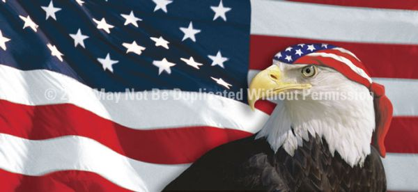 Us Flag 1 With Eagle Amp Bandana See Thru Window Graphic