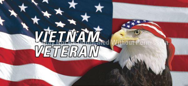 Vietnam Veteran See Thru Window Graphic