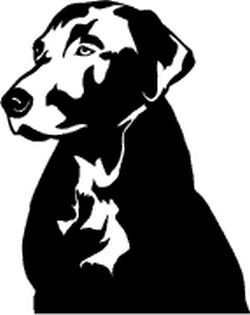 Hunting Dog Decal Labrador Head - Sporting dog decals