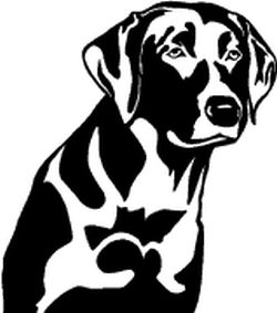 Hunting Dog Decal Detailed Lab Head - Sporting dog decals