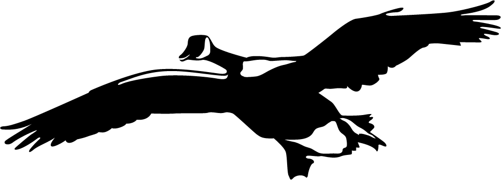Goose silhouette landing images for Duck hunting mural