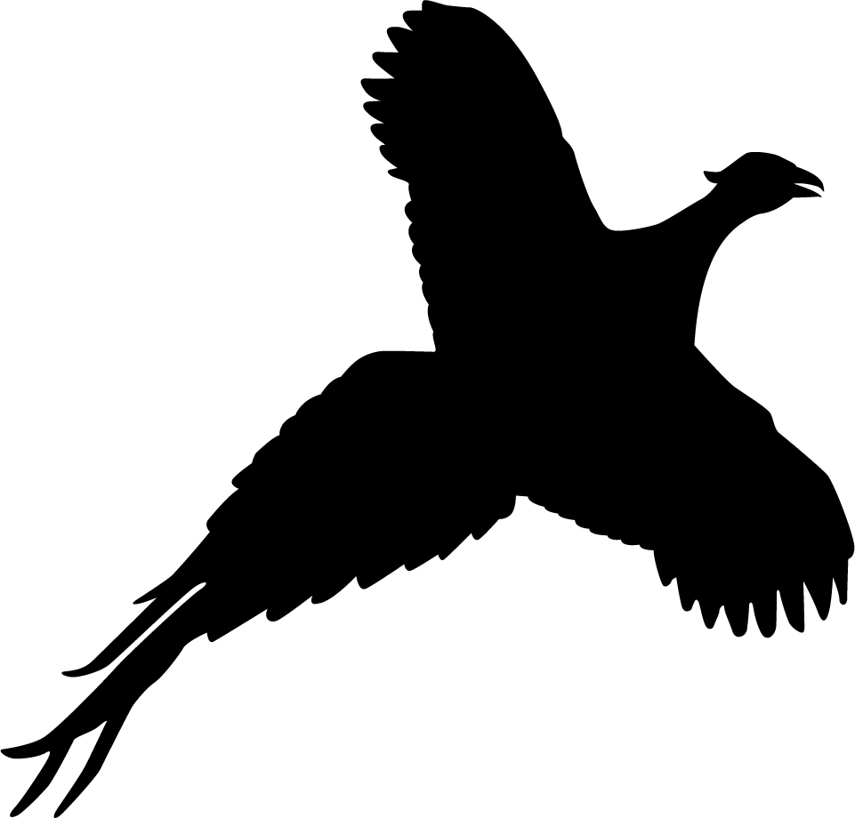 Pheasant Silhouette Flushed pheasant wall decal