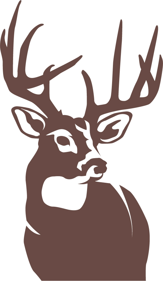Perfect 10 whitetail deer wall decal for Deer wall decals