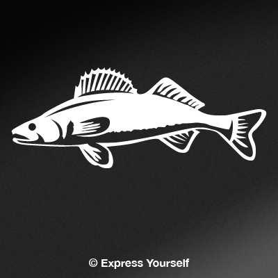 Detailed Walleye Freshwater Fishing Decal