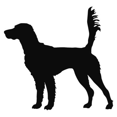 ddbdd813a42d0 English Setter On Scent Hunting Dog Wall Decal