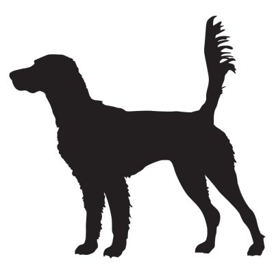 English Setter On Scent Hunting Dog Decal - Sporting dog decals