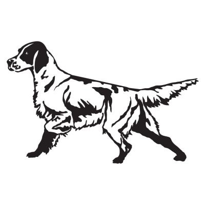 9ff53918d3253 English Setter Detailed Hunting Dog Decal