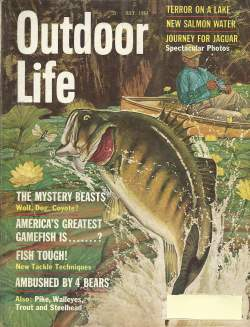 Vintage Outdoor Life Magazine - July, 1964 - Good Condition on Life Outdoor id=24146